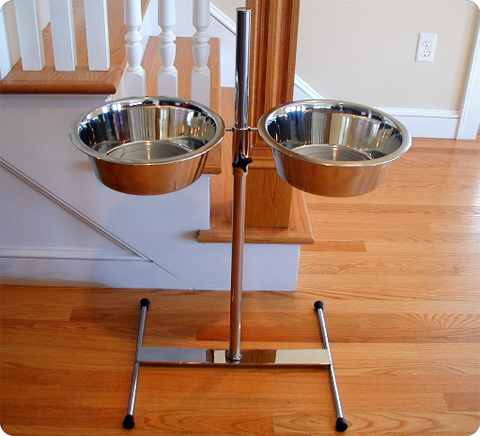 Adjustable stainless steel elevated dog feeder.