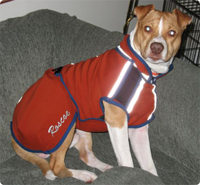 Roscoe in his monogrammed Polartec coat.
