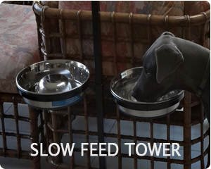 Double bowl adjustable tower with slow feed bowls.